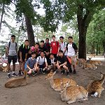 Japan Tour Group